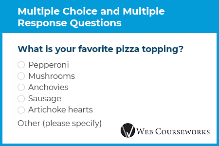 This is an example multiple choice eLearning assessment question.