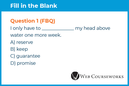 This is an example fill in the blank eLearning assessment question.